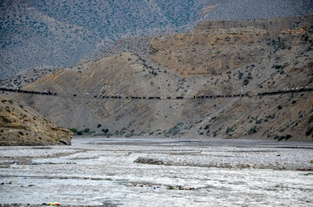 Goats crossing a suspension bridge across Kali Gandaki