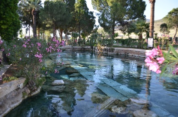 Antique Pool in Pamukkale