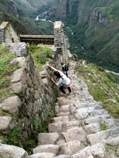 One of the numerous stairways down from Huayna Picchu. Lets not sugar coat this - Huayna Picchu is worth the climb, but it's not easy