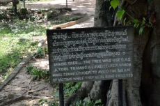 More from the Killing Fields